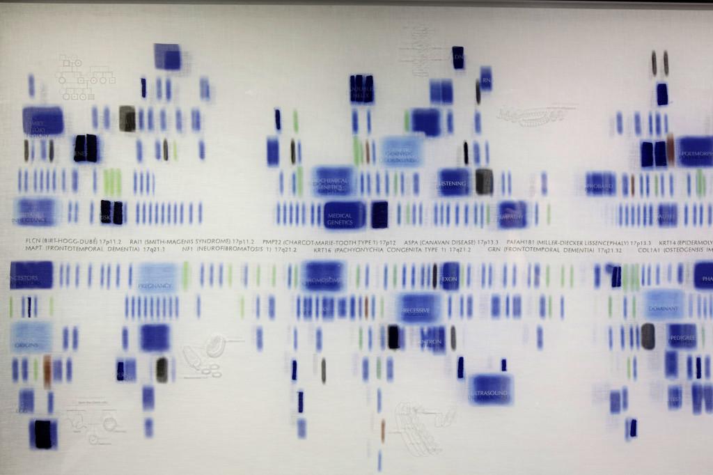 Chromosome 17, by Geraldine Ondrizek, 2011